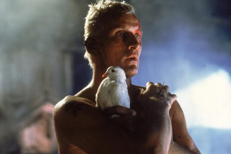 «Бегущий по лезвию», 1982