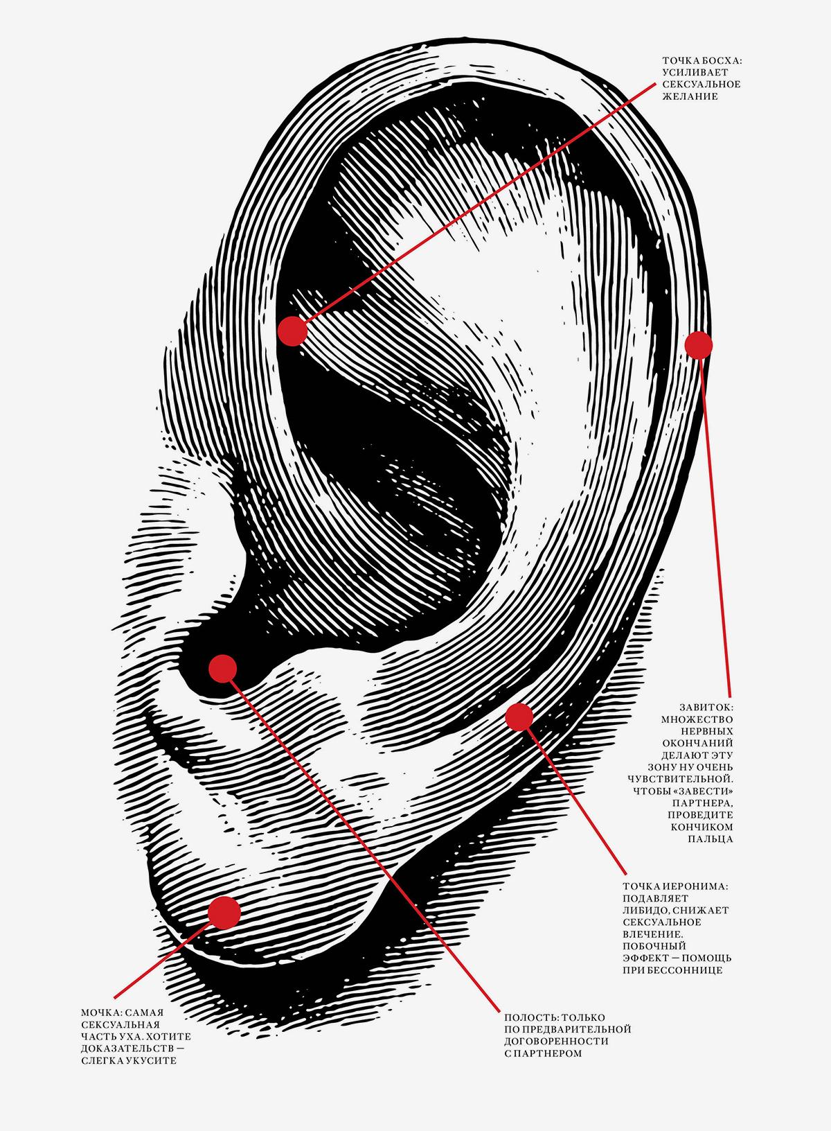 Эротические зоны на ушах