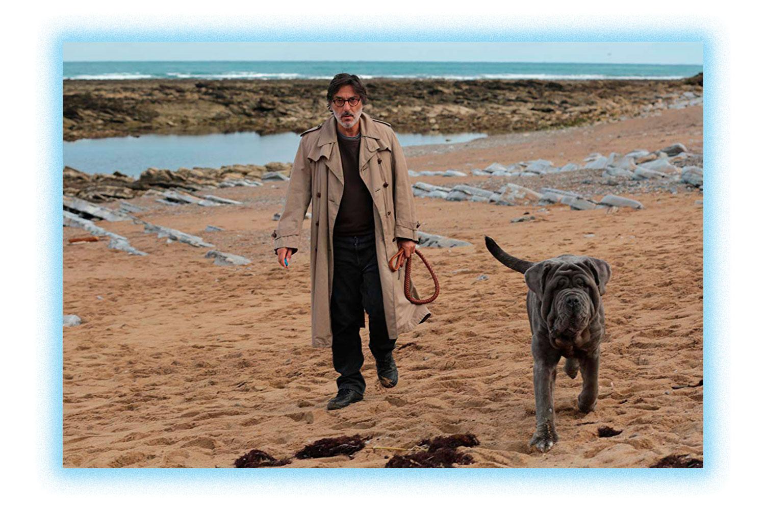 Фильм: «Моя собака Идиот»