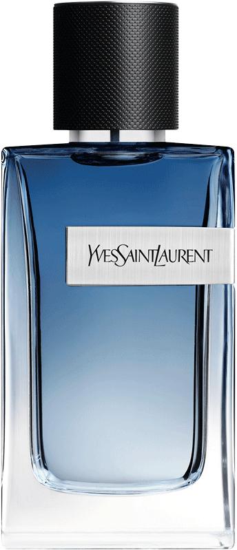 Y Live, Yves Saint Laurent