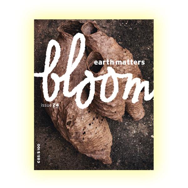Bloom, Нидерланды
