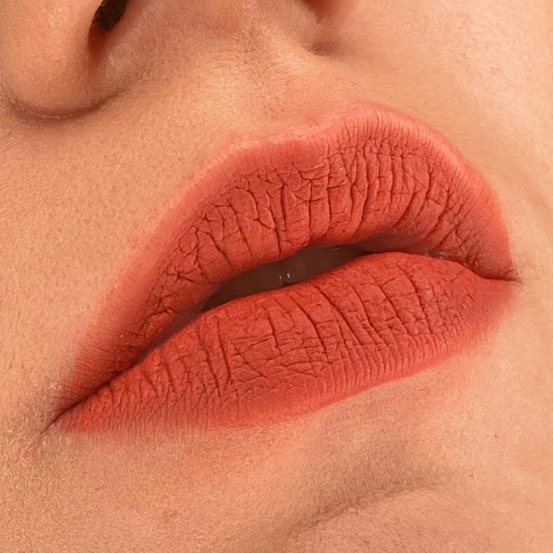 Помада Rouge Velvet The Lipstick, 06 Abrico'dabra!, BOURJOIS на губах